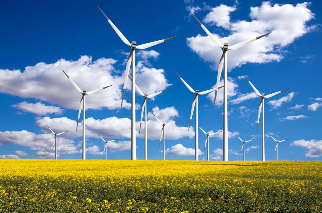 Google на100% обеспечит себя энергией извозобновляемых источников в наступающем году
